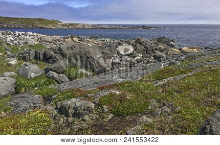 Rocky Coastline Of Newfoundland Near Town Of Tilting