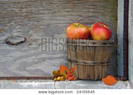Autumn apples in basket