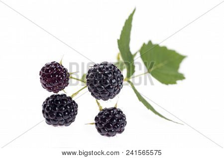 Black Raspberry With Leaves, Isolated On White Background