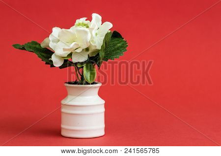 White Artificial Flower In White Porcelain Flowerpot On Red Background