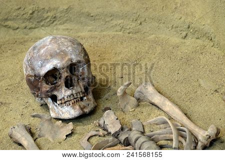 The Human Skull And Bones On The Sand. Archaeological Excavations. The Concept Of Death And Exhumati