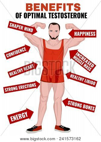 Benefits Of Optimal Testosterone. Beautiful Medical Vector Illustration With Useful Data Isolated On