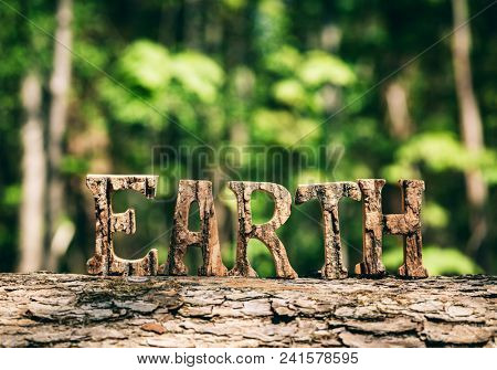 EARTH writing made from wooden letters, standing in the forest. Earth Day. Save the Earth.