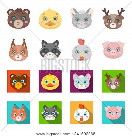 Protein, Raccoon, Chicken, Pig. Animal Muzzle Set Collection Icons In Cartoon, Flat Style Vector Sym