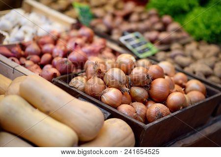 Fresh Bio Onion On Farmer Market In Strasbourg, France. Typical European Local Farmer Market