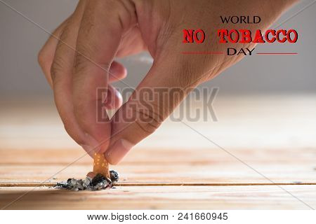 World No Tobacco Day, May 31. Stop Smoking. Close Up Man Hand Holding And Destroy Cigarettes.