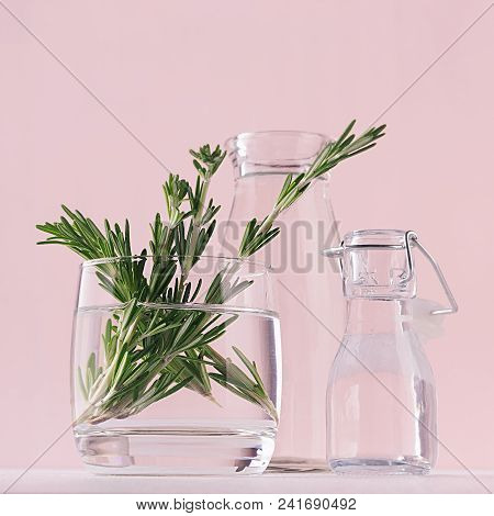 Green Rosemary Twigs In Glass Vase And Vintage Bottles As Home Decor On Soft Pink Pastel Background,