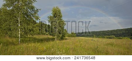 Panorama Of The Summer Forest With A Rainbow