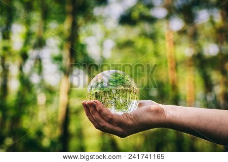 Woman's hand holding a glass sphere in the woods. Nature and environment.