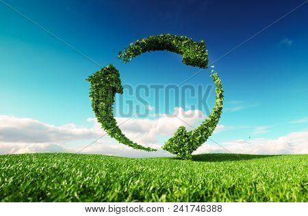Sustainable Development, Eco Friendly Lifestyle Concept. 3d Rendering Of Arrow Circle Icon On Fresh