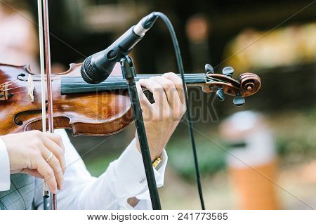 Music, Performance, Orchestra Concept. In Delicate Arms Of Caucasian Man There Is Well Known Beautif
