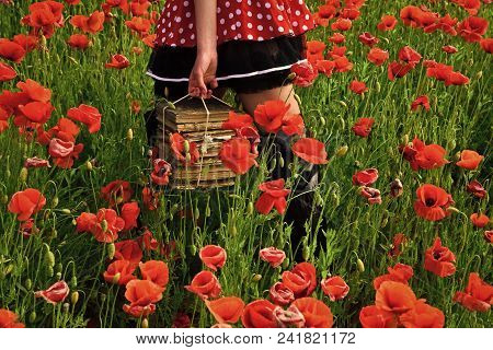 Opium Poppy, Agile Business, Ecology. Education, Business, Grammar, Woman With Books. Poppy, New Tec