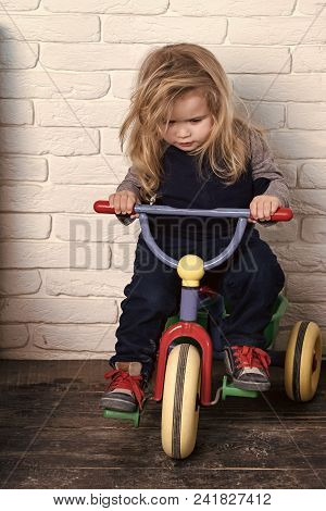 Child Childhood Children Happiness Concept. Boy Riding Bicycle In Room. Child And Tricycle. Baby Cyc