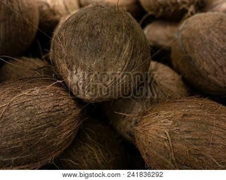 Coconut Harvest. Many Coconuts. Coconut For Food Textures. . Landscape. A Backdrop Of Coconut. Stree