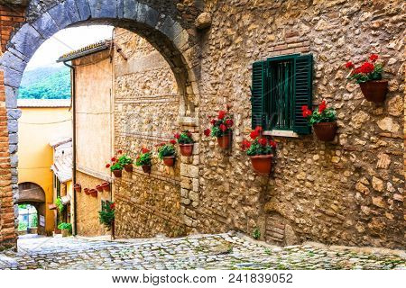 Traditional medieval villages of Italy - picturesque floral streets of Casperia ,Rieti province