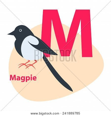 Children Abc With Cute Animal Cartoon Vector. English Letter M With Funny Magpie Flat Illustration I