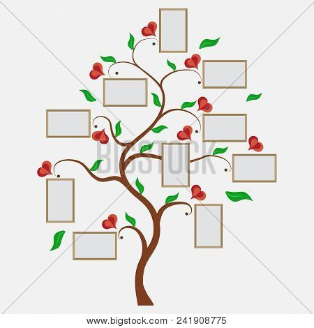 Family Tree, Photos Within The Seven, Grandparents' Parents And