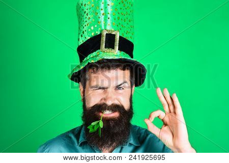 St Patrick's Day. Bearded Man In Green Men Hats Celebrate Patricks Day. St Patrick's Day Party. Gree