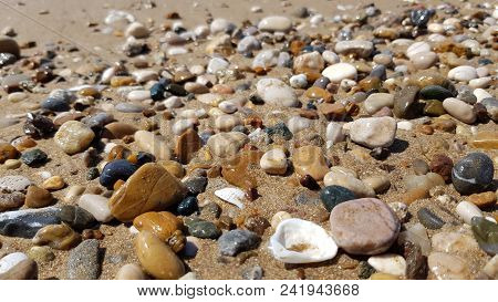 Wet Sea Stones And Seashells On Wet Beach Sand. Natural Sea Pebbles Closeup. Beach Smooth Stone Macr