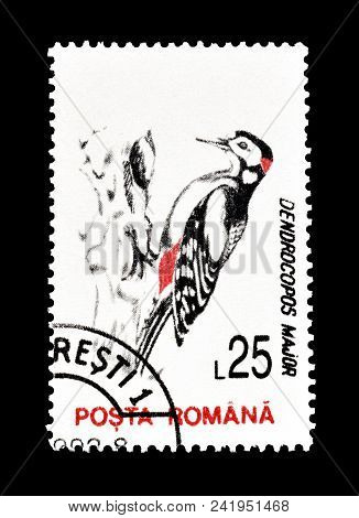 Romania - Circa 1993 : Cancelled Postage Stamp Printed By Romania, That Shows Great Spotted Woodpeck