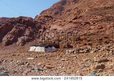 Bedouins Houses In Dana Nature Biosphere Reserve Landscape Near Dana Historical Village, Jordan, Mid