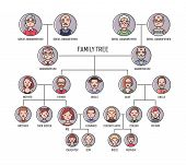 Family tree, pedigree or ancestry chart template. Cute men's and women's portraits in circular frames connected by lines. Links between relatives. Colorful vector illustration in lineart style poster