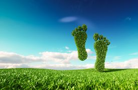 Sustainable Eco Friendly Lifestile Concept. 3d Rendering Of A Footprint Icon On Fresh Spring Meadow