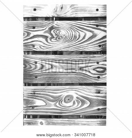 Wooden Texture Black White. Wood Grain Background. Timber Outline Grunge Wood Cover. Nature Tree Wal