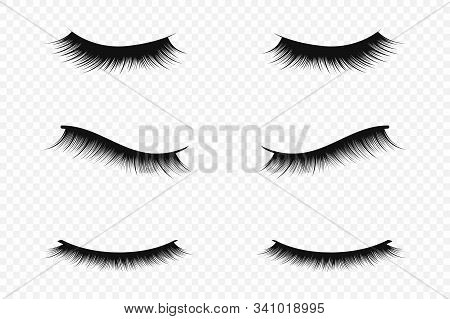 Eyelash Extension Concept. Lush Black Eyelashes On Transparent Background For Makeup And Cosmetic In