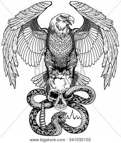 Eagle Sitting On The Human Skull Wrapped With Snake. Angry Dangerous Rattlesnake. Black And White Ta