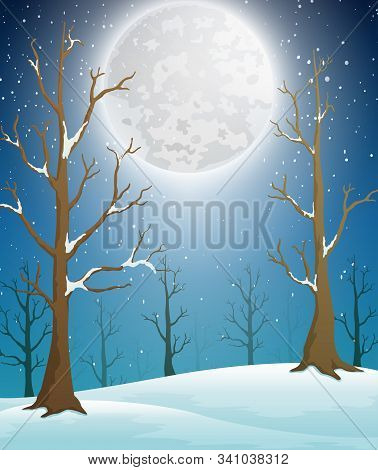 Winter Forest Landscape With Moonlight And Bare Trees