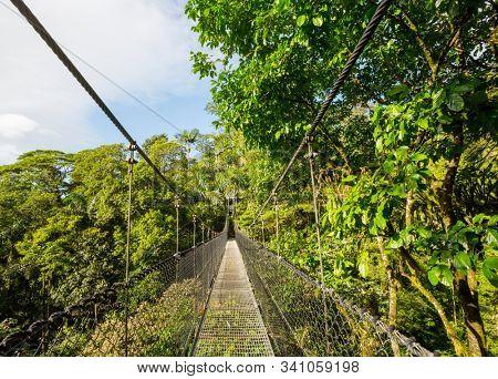 Handing Bridge in green jungle, Costa Rica, Central America
