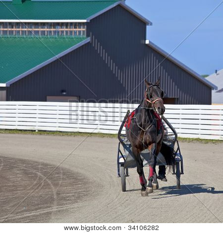 Horses in harness racing around the track. poster