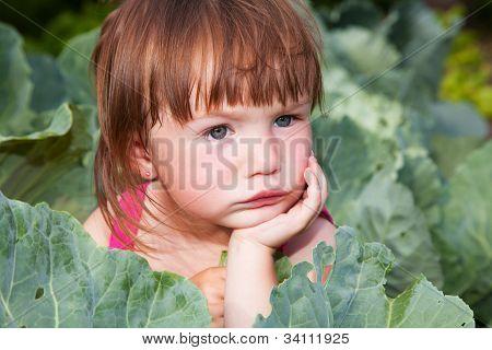 Pequeña muchacha sentada en las coles