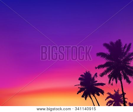 Dark Palm Trees Silhouettes On Violet And Pink Colors Sunset Sky Background, Vector Illustration