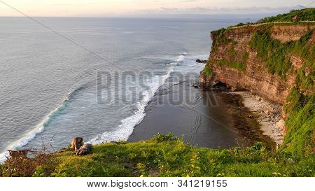 Wide Shot Of Macaques Resting On A Cliff Edge At Uluwatu Temple In Bali