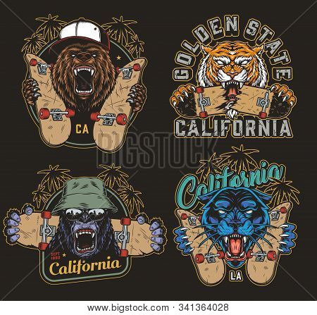Colorful Skateboarding Vintage Logos With Skateboards Inscriptions Palm Trees And Cruel Ferocious An