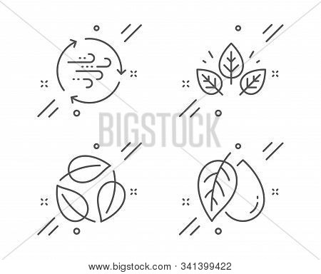 Leaves, Wind Energy And Organic Tested Line Icons Set. Mineral Oil Sign. Nature Leaf, Breeze Power,