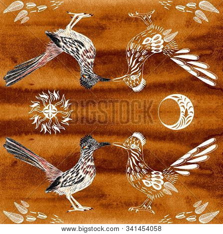 Road Runner. Greater Roadrunner. Geococcyx Californianus. Bird Illustration. Spirit Animal. Sun, Moo