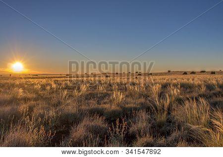 Sunrise On High Grasslands Outside Flagstaff, Arizona..