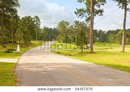Street In Rural Florida Community