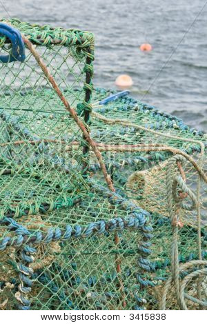 Lobster Net