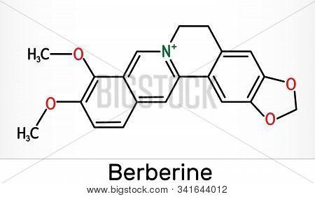 Berberine C20h18no4, Herbal Alkaloid Molecule. Skeletal Chemical Formula. Illustration