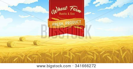 Farm Scene Rural Fields Wheat Poster With Red Ribbon Ornate Text And Outdoor Scenery With Field Vect