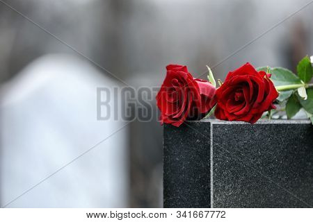Red Roses On Black Granite Tombstone Outdoors, Space For Text. Funeral Ceremony
