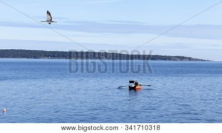 Baltic Sea, Sweden On September 27. View Of An Unidentified Fisher Man In A Small Boat On September