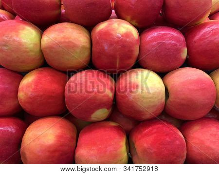 Close Up On Cripps Large Pink Apples,  A Particularly Attractive Variety Of A Medium To Large Size.