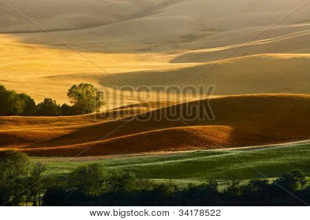 Countryside landscape in Tuscany region of Italy