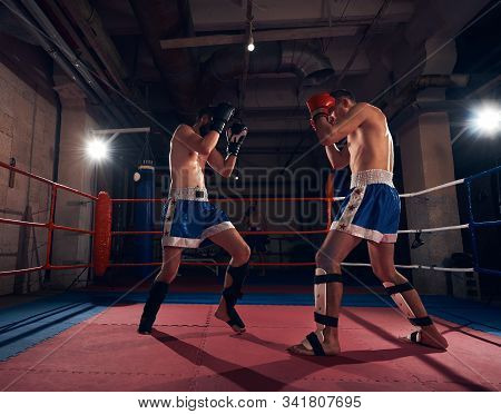 Two Adult Male Fighters Practicing Kickboxing In The Ring At The Health Club
