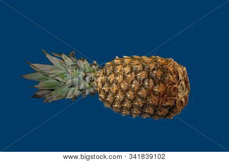 Single Whole Pineapple Tropical Fruit Or Ananas Isolated On Blue Background